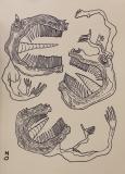 'La disputa', pennarello su carta, 50 x 70 cm., 2017