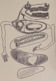'Mangiar male', pennarello su carta, 50 x 70 cm., 2017