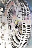 Colosseo #1, acrilico e olio su tela, 120 x 80 cm., 2005